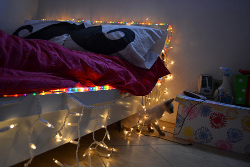 bedroom, cute, mustache pillow, photography