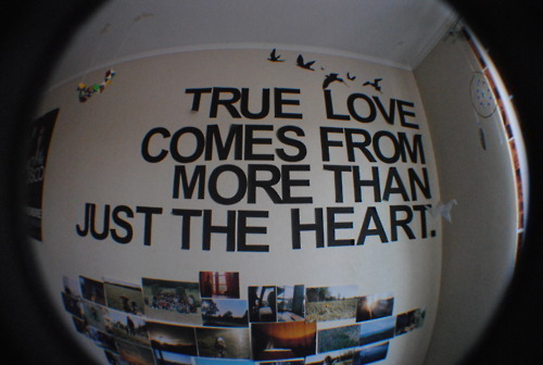 black, heart, quote, true, true love