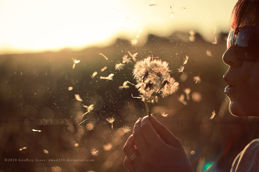 blowing, dandelions, girl, love, pretty