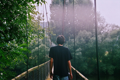 boy, bridge, florest, nature