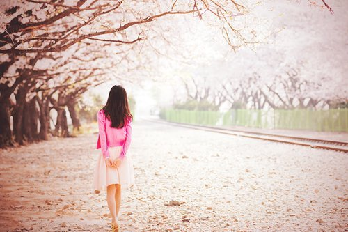 fashion, girl, photography, pretty, sakura