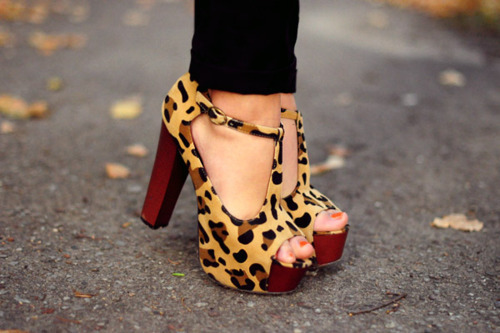 fashion, heels, high heels, leopard print, red