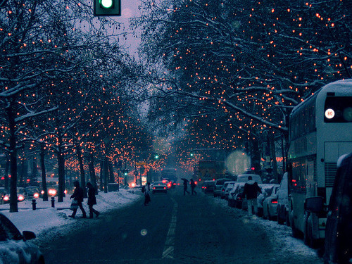 lights, place, winter