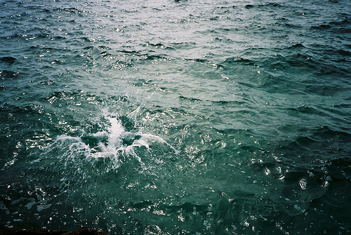 ocean, photography, sea, splash, water