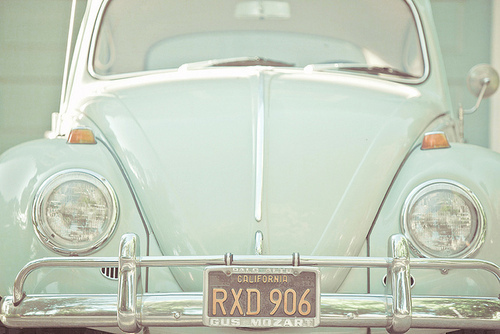 adorable, beetle, blue, california, car