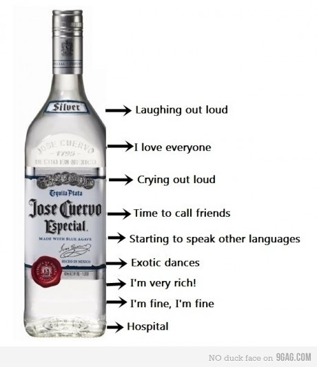 alcohol, funny, party, party time, text, vodka