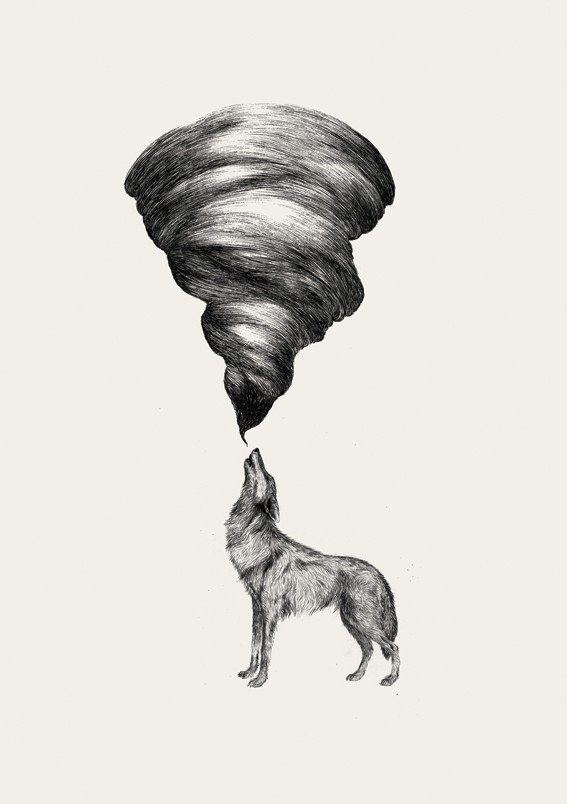 art, black and white, canine, cyclone, dog, etsy, howl, illustration, storm, tornado, wolf