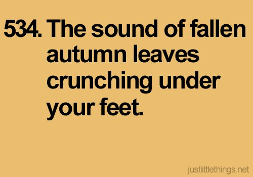 autumn, fall, fallen, fallen autumn leaves, falling leaves, feet, justlittlethings, leaves, little, little things, love, orange, quotes, sound, text, things