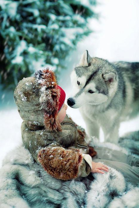 awww!, baby, dog, snow, whinter