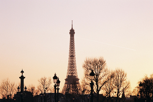 bare, branches, eiffel, france, lamp