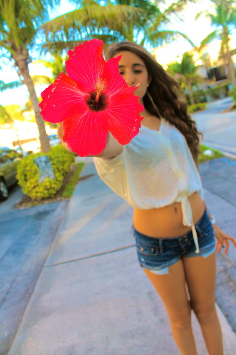 beach, fashion, flower, girl, jeans