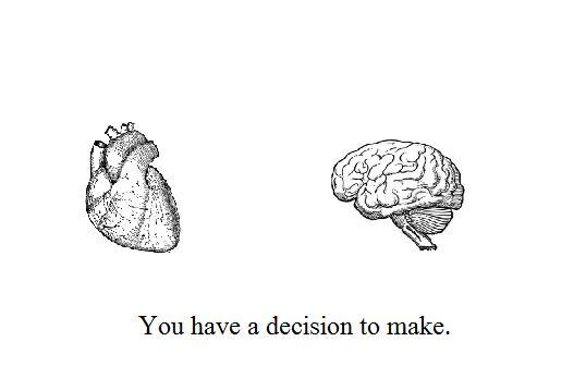 beautiful, brain, decision, heart, love
