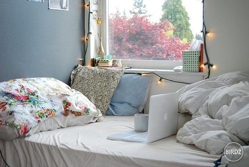 bed, bedroom, laptop, lights, pillows, tree, window