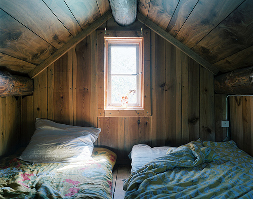 bed, beds, cabin, room, window, wood