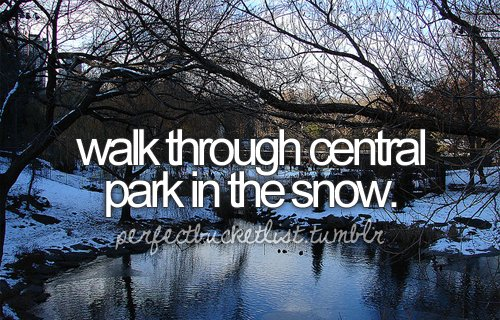 before i die, bucket list, bucketlist, central, central park