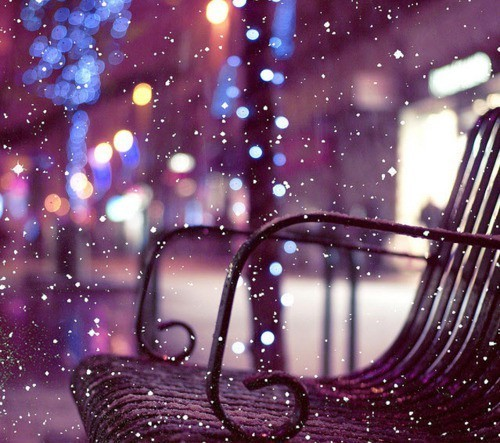 bench, christmas, cold, snow, winter