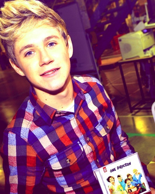 blonde, boy, checked, cute, handsome, niall horan, one direction, photography, shirt