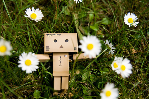 danbo, enjoy, flower, lie, robot, spring