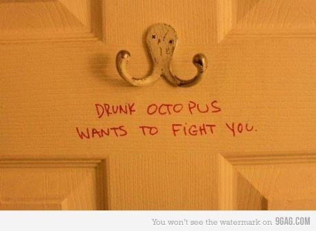 drunk, funny, lol, octopus