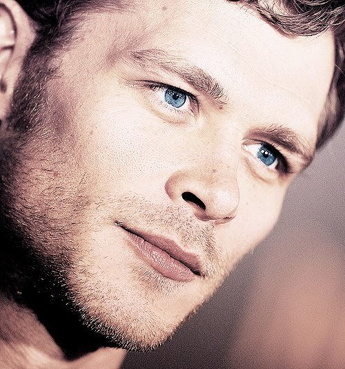 joseph morgan, klaus, the vampire diaries, tvd