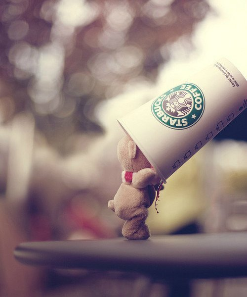 bear-cute-lovely-starbucks-Favim.com-299792.jpg