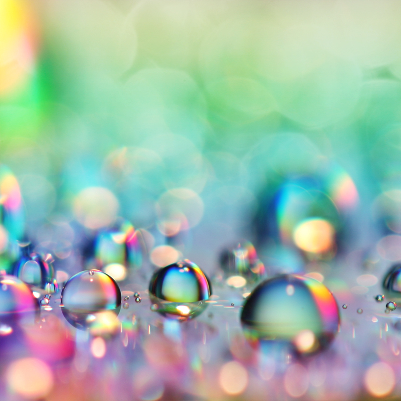 beautiful, colorful, helpless, macro, photography, rain, rainbow, water