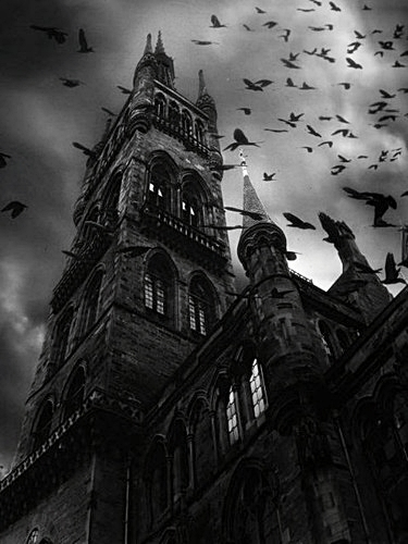 birds, black and white, church, dark, darkness, goth, gothic, history, religion, scary