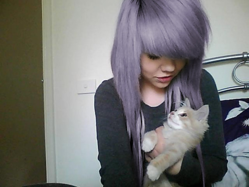 cat, girl, purple hair