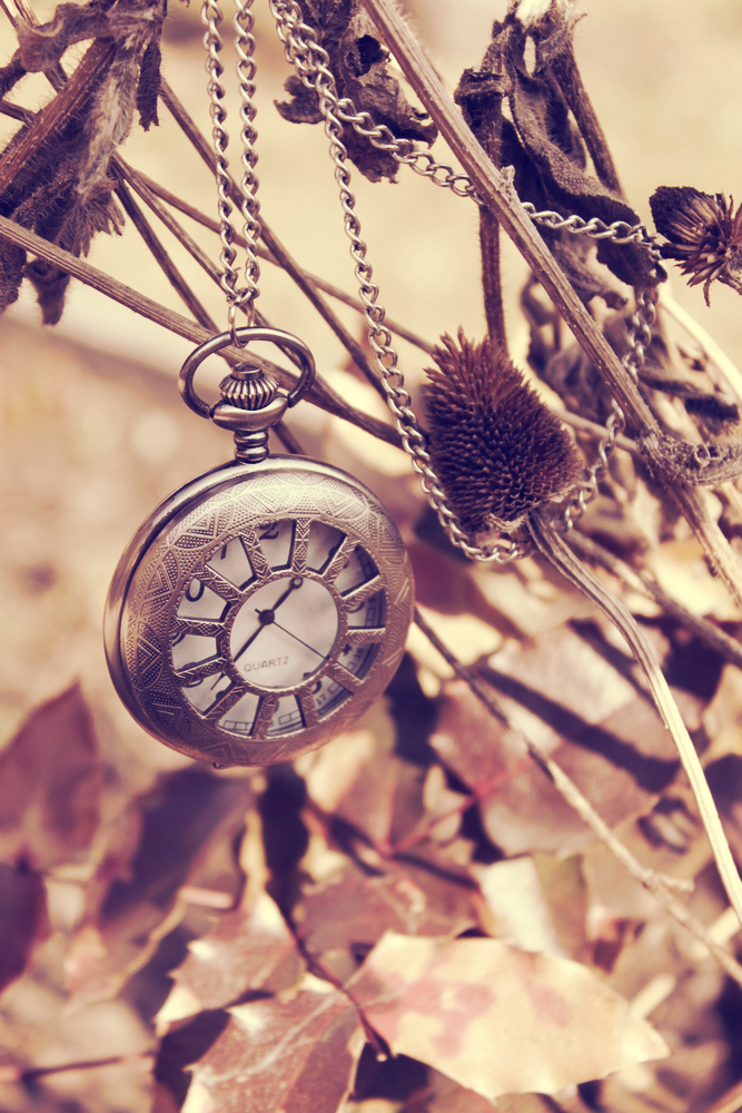 clock, leaves, time, watch