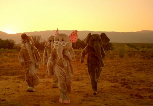 coldplay, elephants, glasses, paradise, pink
