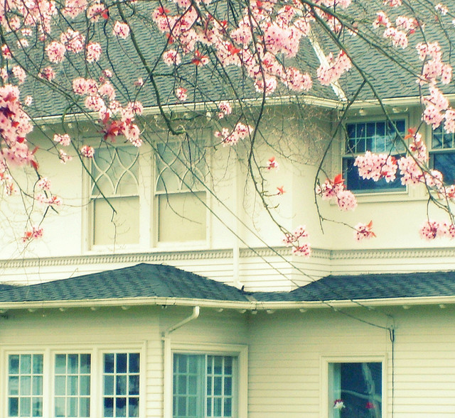 cute, flowers, house, pink