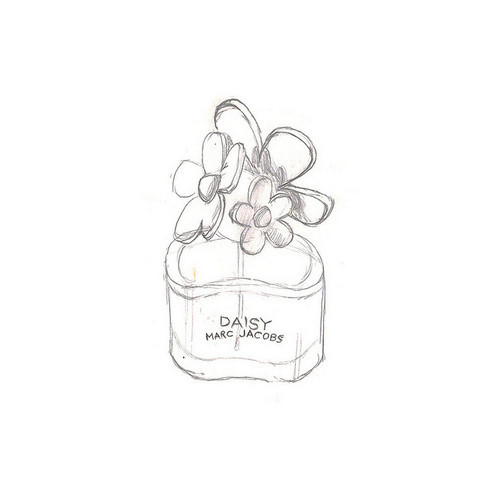 daisy, daisy marc jacobs, drawing, flower, illustration, marc jacobs, perfume