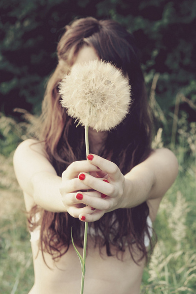 dandelion, girl, photography