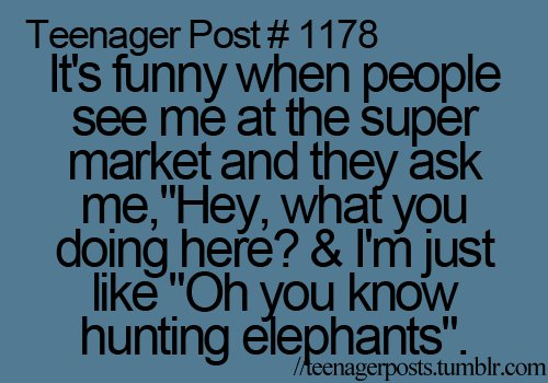 elephant, funny, quote, teenager post, teenager posts