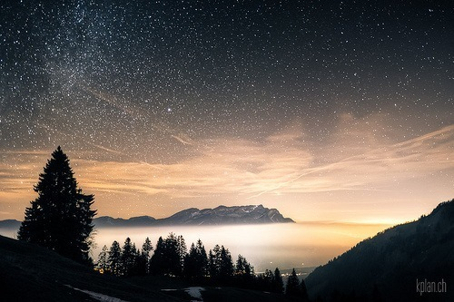 fog, forest, lights, mist, mountains